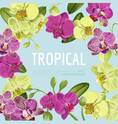 Hello summer tropic design tropical orchid flowers vector
