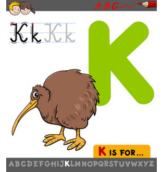 Letter k with cartoon kiwi bird vector