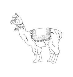 Llama outline vector