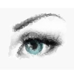polygonal eye vector image