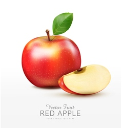 Ruddy apple with apple slices isolated vector