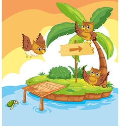 Three owls flying around the island vector image