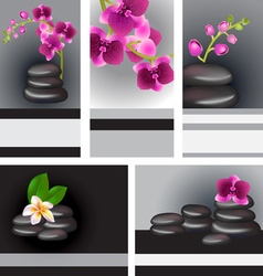 Shiny Black Spa Backdrop vector image vector image