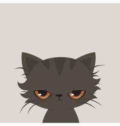 Angry cat cartoon Cute grumpy cat vector image