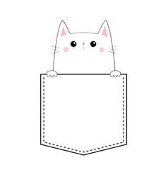 cute kitten in pocket pink cheeks holding paw vector image