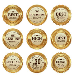 gold quality badges and labels vector image