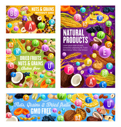 Organic food natural nuts dried fruits and seeds vector