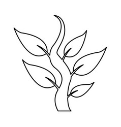 Steam with leaves natural plant botany icon vector