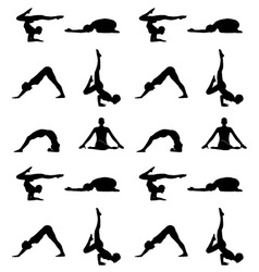 Yoga poses silhouette wallpaper vector image