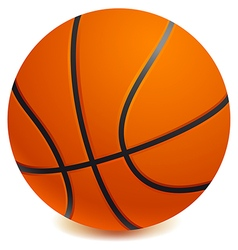 Basket ball vector image