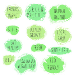 eco food emblem set vector image