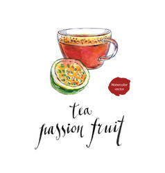 tea from passion fruit vector image vector image