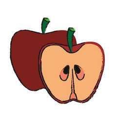 apples in halves fruit vector image