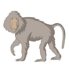 baboons icon cartoon style vector image