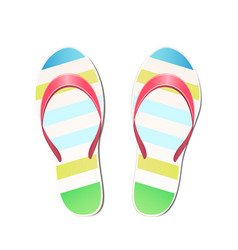 beach slippers summer symbol vector image