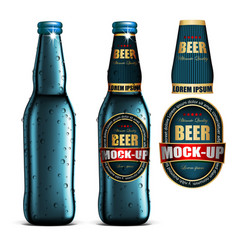 Beer-mock-up-setblue bottle without a label vector