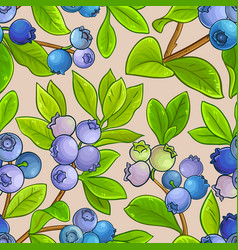 Blueberry pattern on color background vector