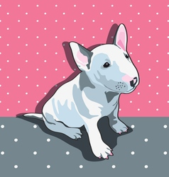 Bullterrier vector