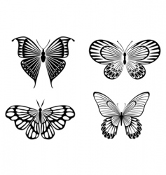 butterfly tattoos vector image