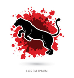 panther or lioness jumping vector image