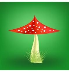 Poisonous Mushroom Fly Agaric vector