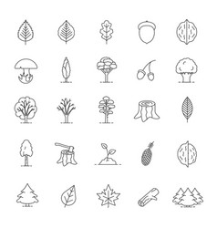 Tree types linear icons set vector