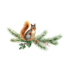 watercolor christmas card with squirrel vector image
