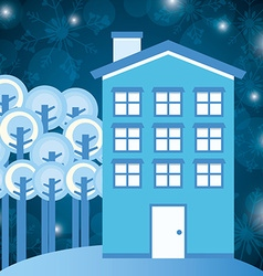 winter homes design vector image
