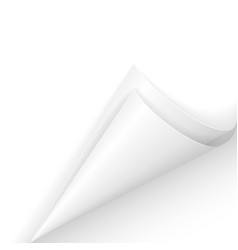 white paper corner on white background vector image vector image