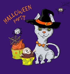 Cartoon cute cat character in a witch s hat with a vector
