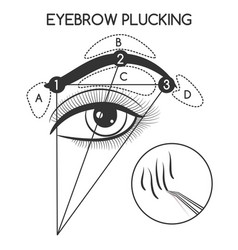 Eyebrow plucking concept vector