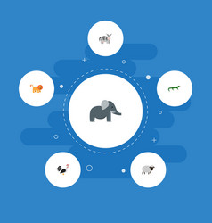 Flat icons wildcat trunked animal reptile and vector