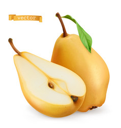 pear sweet fruit 3d realistic icon vector image