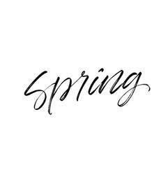 spring phrase handwritten lettering vector image