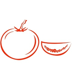 tomato and segment vector image