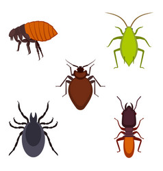 collection of colorful bug icons on vector image