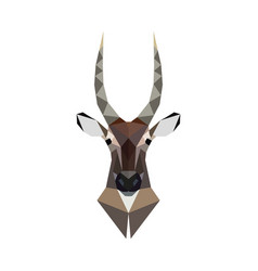 antelope portrait polygonal style wild animal vector image