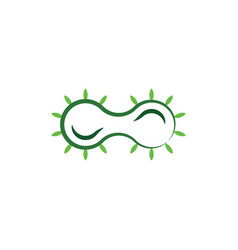 bacteria cell division icon logo vector image
