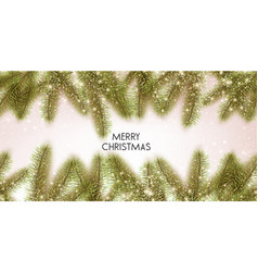christmas background with green fir twig vector image