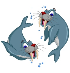 cute Cartoon walrus couple vector image