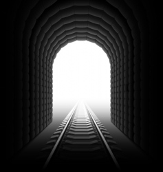 railroad tunnel vector image