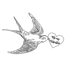 realistic flying swallow with love card vector image