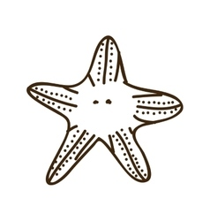 Silhouette starfish animal marine design vector