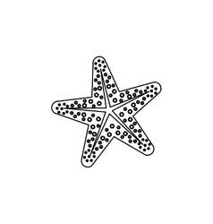 Star sea creature vector