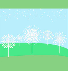 dandelion flower field vector image