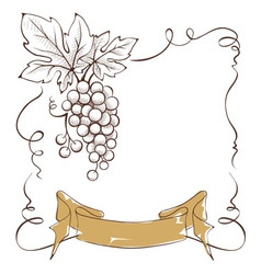 Wine label with a bunch of grapes and ribbon vector image vector image
