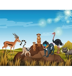 Many animals standing in the field vector