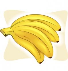 bananas vector image