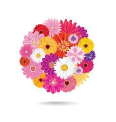 flower bouquet floral frame greeting card summer vector image