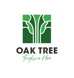 oak tree outline inspiration logo design vector image